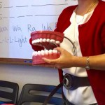 歯形をもっている